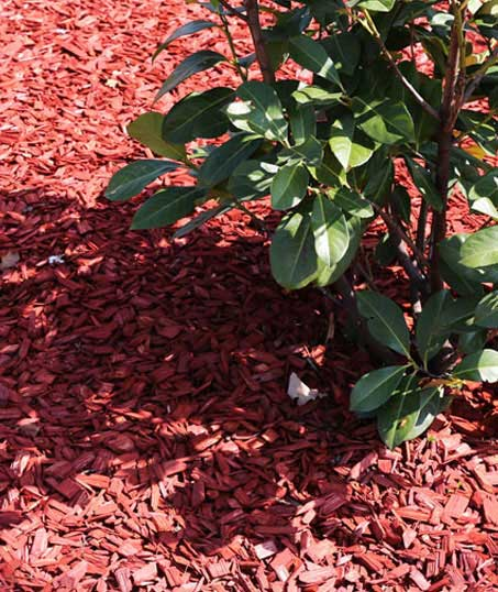 Perfectly Edged Lawncare LLC Mulching
