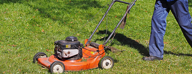 Lawn Mowing Service, Lawn Service and Lawn Care Services